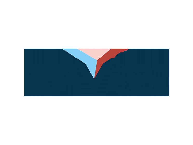 csolutions-ifv